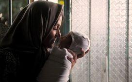 «شيار 143 » و6 دليل براي ماندگاري در سينماي ايران