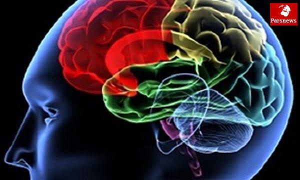 راهکارهای اصلی تقویت مغز کدامند؟